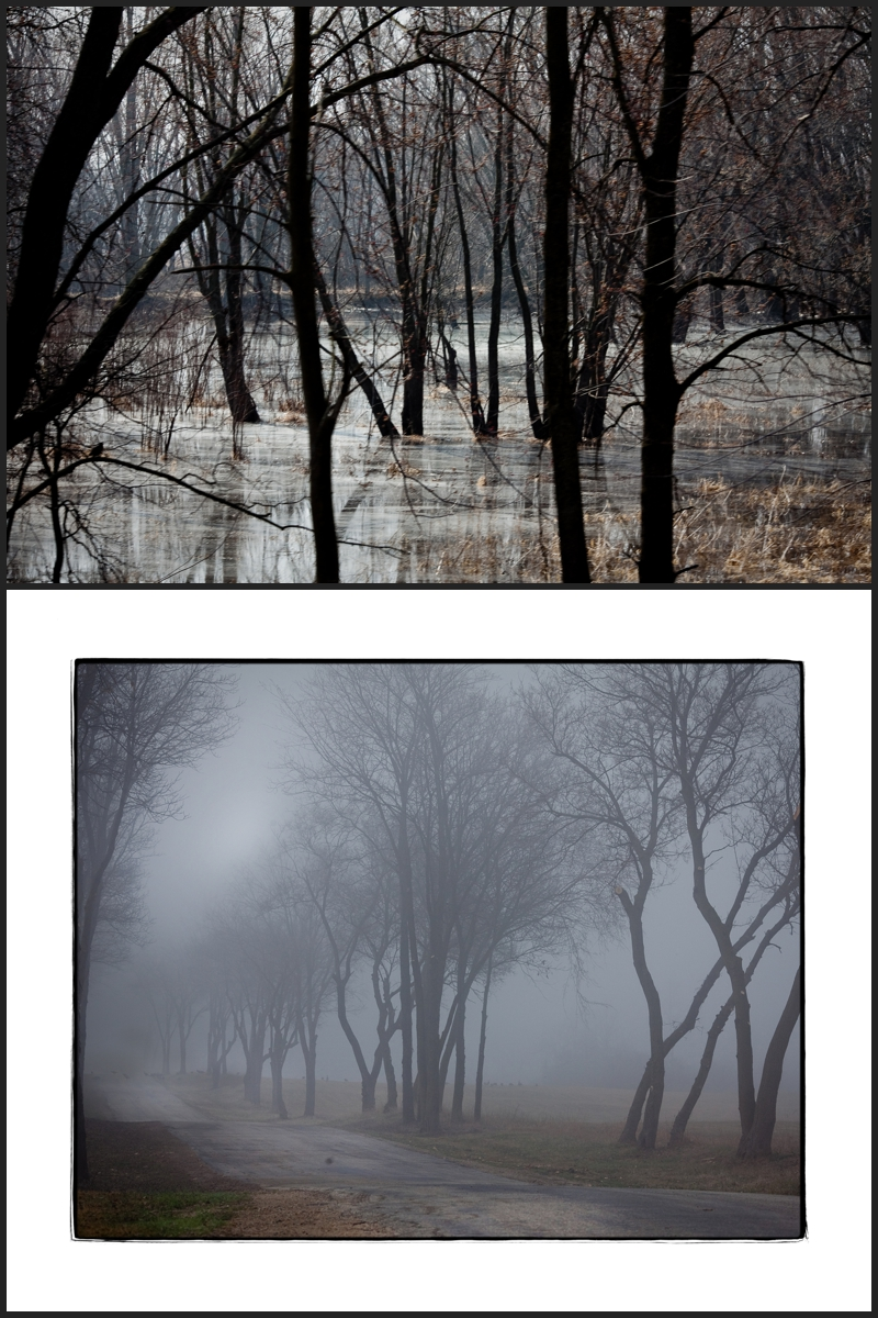 Milwaukee Photographer | 3.6.5. #324 March15